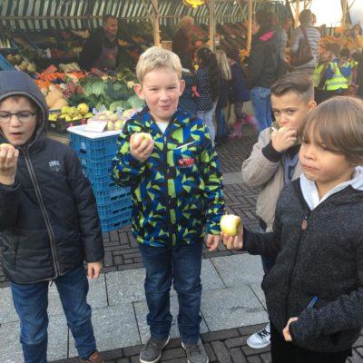 Markt_Hummeln002