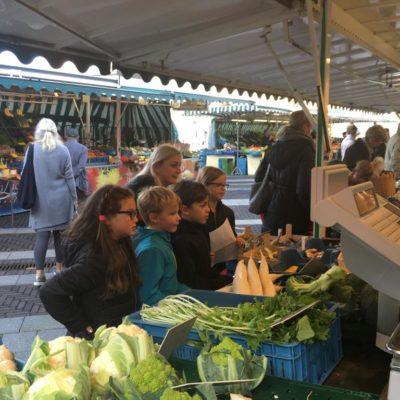 Markt_Hummeln004